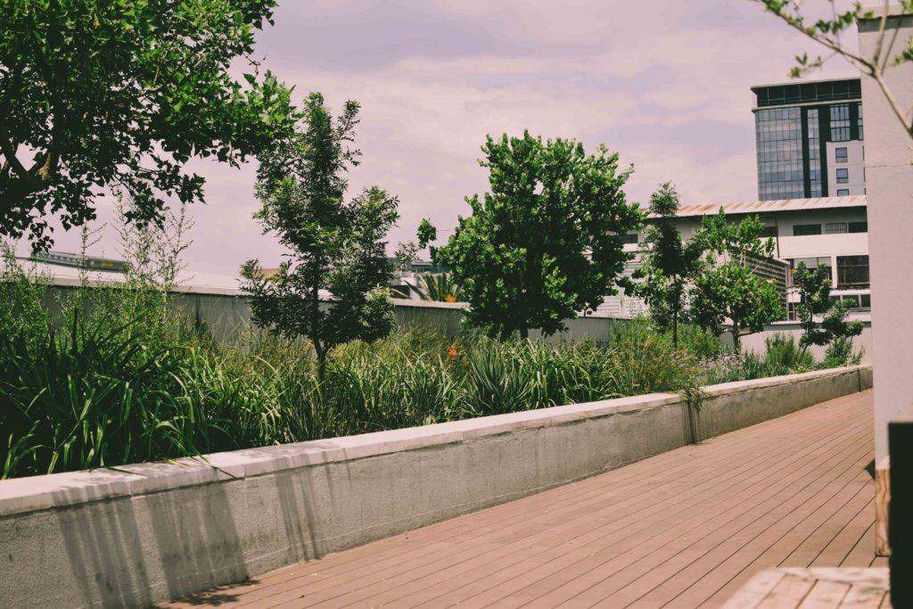 Rooftop fashion shoot, joburg fashion blogger.
