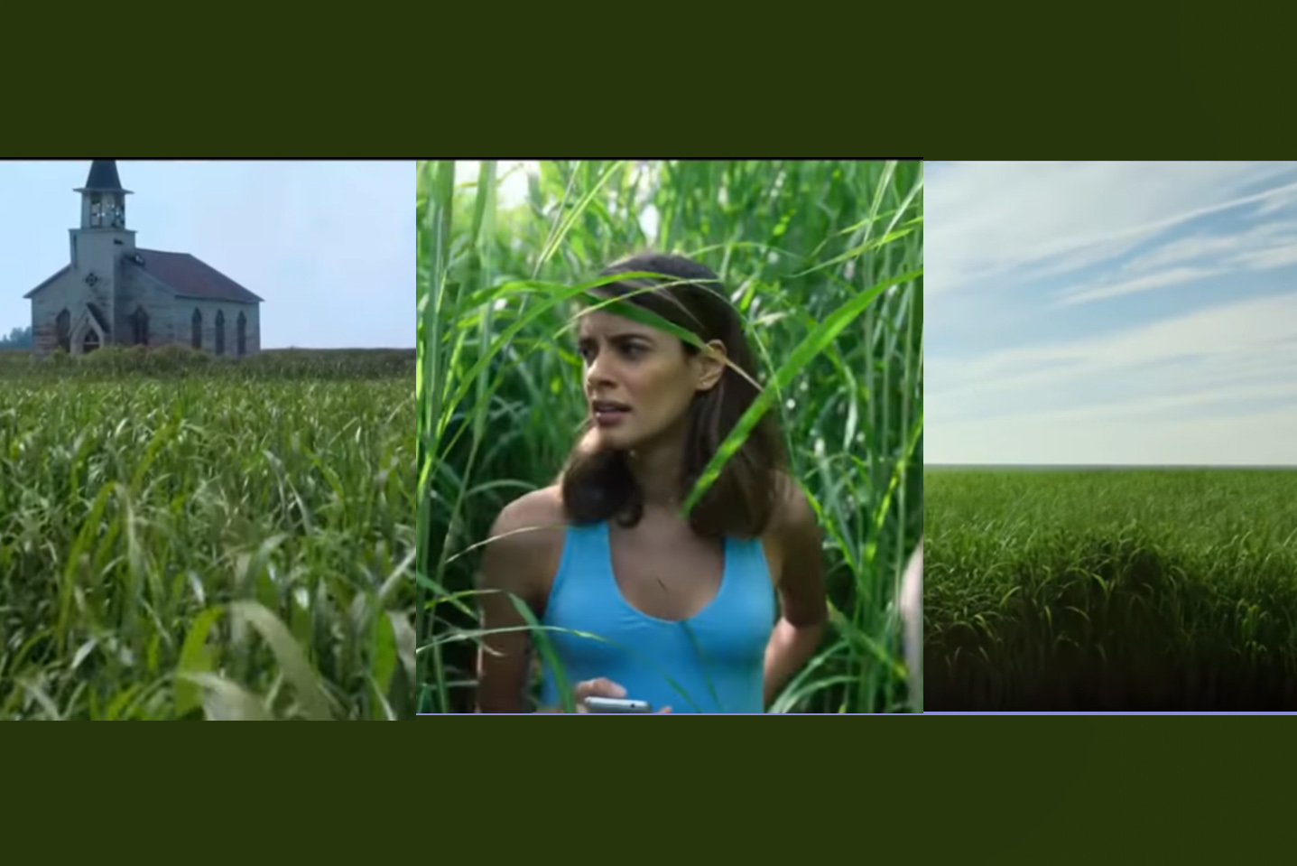 in the tall grass movie review